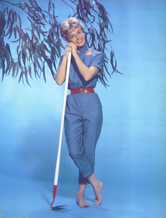 Doris-Day-doris-day-30372690-1241-1628